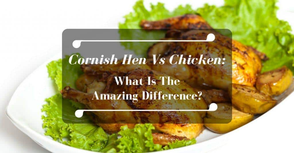 cornish-hen-vs-chicken