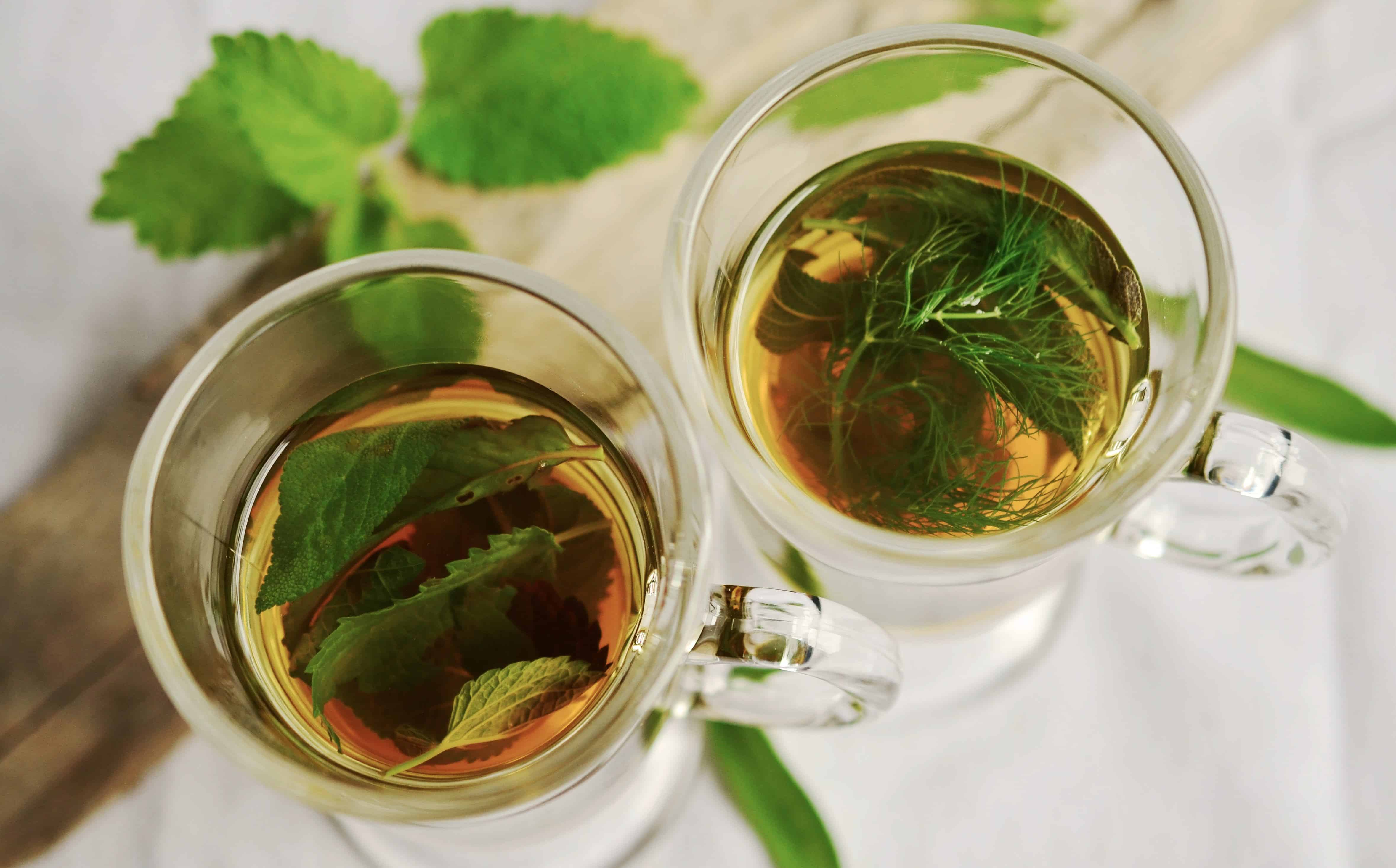 teas good for uti