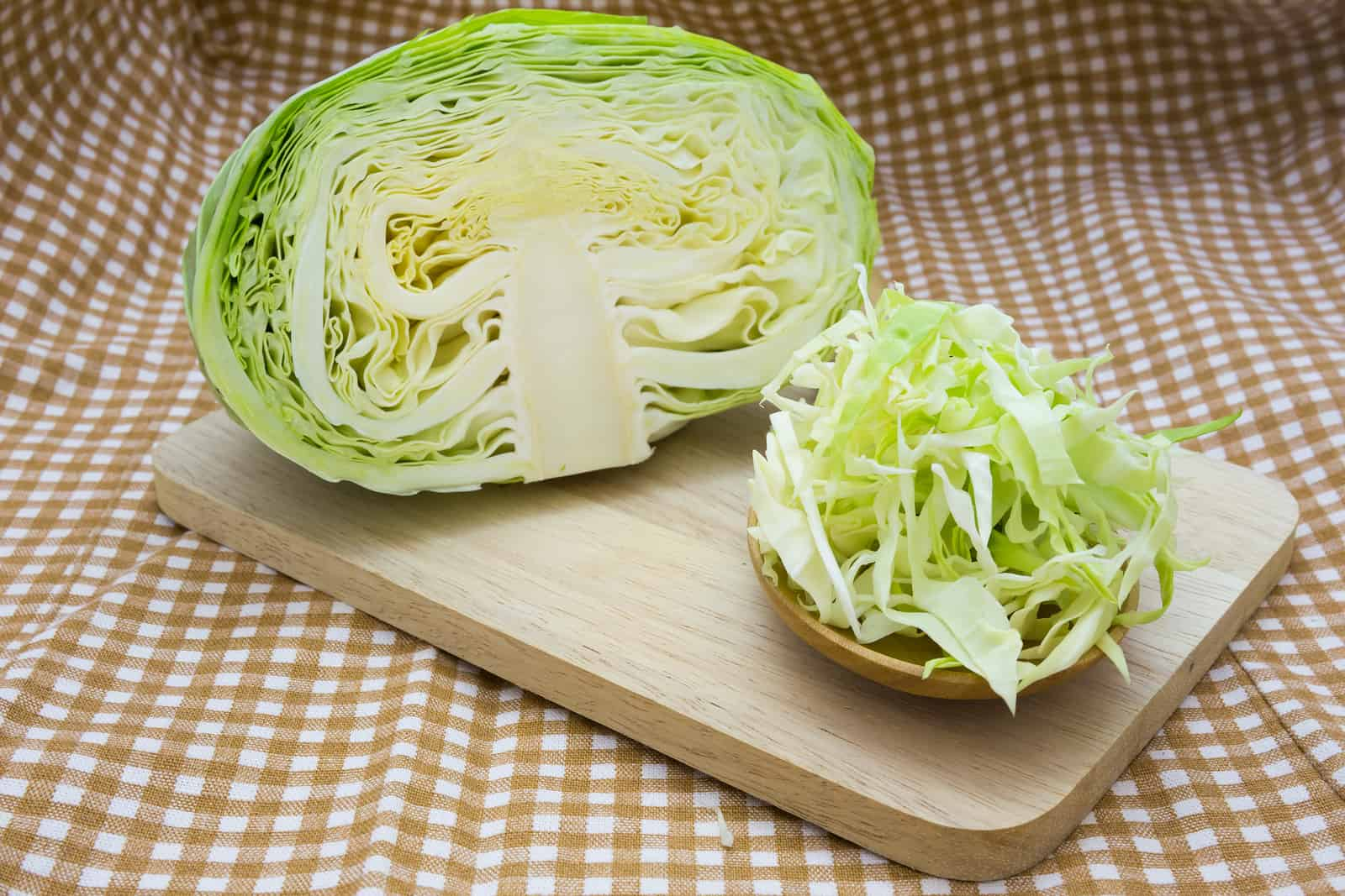cabbage chili recipe