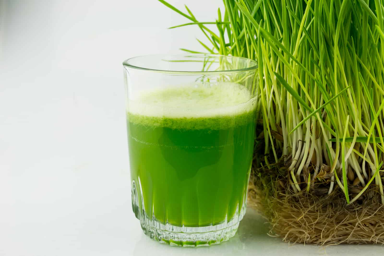 what does wheatgrass taste like-benefit